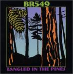 Br5-49 - Tangled in the Pines