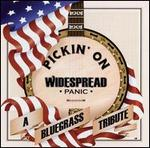 Various Artists - Pickin\' on Widespread Panic